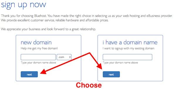 Choose Bluehost Domain