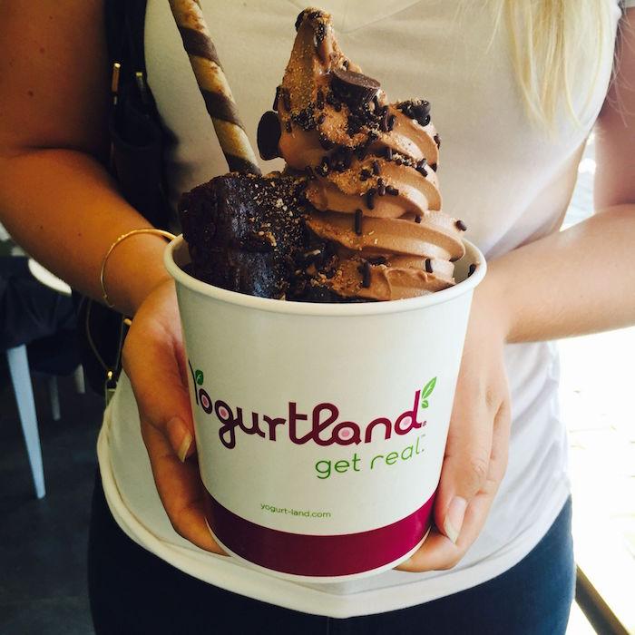 free frozen yogurt ice cream